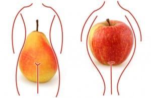 Les effets des hormones sur la répartition du poids